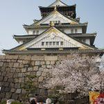 Osaka Schloss mit Kirschblüten
